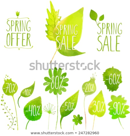 special spring sale with flower green drawn label stock photo © marinini