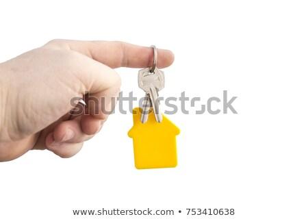Idea Concept. Keys with Keyring. Stock photo © tashatuvango