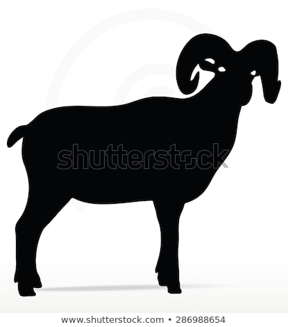 big horn sheep  silhouette in twist head  pose Stock photo © Istanbul2009