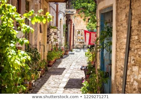 通り 村 地区 キプロス 建物 ドア ストックフォト © Kirill_M