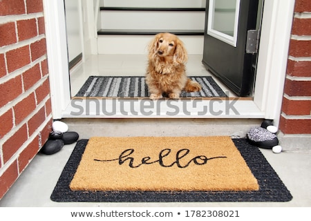 Doorway Stock photo © Bigalbaloo