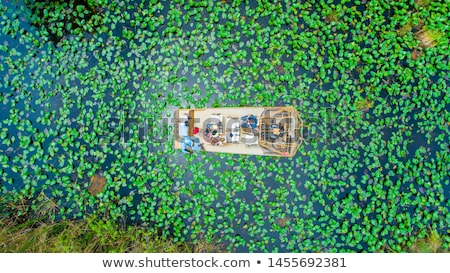 Airboat in Everglades Florida Big Cypress Stock photo © lunamarina