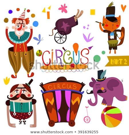 partij · clown · schattige · dieren · gelukkig · kat · haren - stockfoto © natalya_zimina