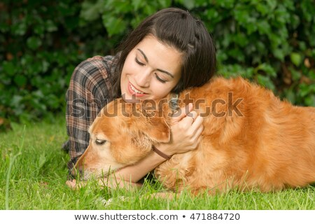 Brunette Woman Praising Her Golden Retriever Dog Canine Stock photo © cboswell