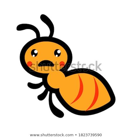 Vermelho formiga cara feliz ilustração natureza fundo Foto stock © bluering