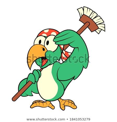 Cute papuga cartoon pirackich kostium Zdjęcia stock © jawa123