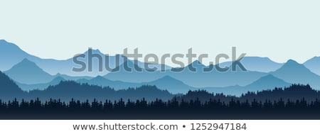 blue winter forest vector stock photo © beaubelle