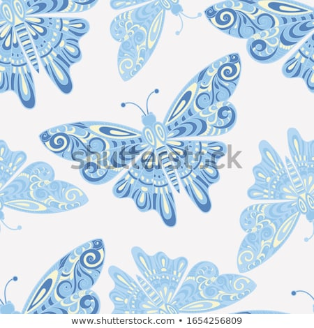 blue patterned butterfly