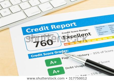 krediet · verslag · vergrootglas - stockfoto © devon