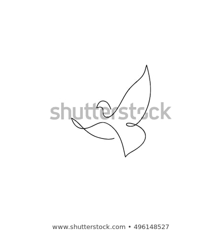 Stock fotó: Madár · szárny · galamb · logo · sablon · szív