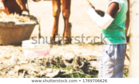 ретро врач мальчика раненый руки Поп-арт Сток-фото © studiostoks