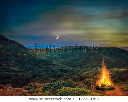 şenlik ateşi dağlar aile orman dağ seyahat Stok fotoğraf © orla