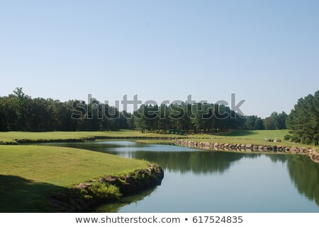 Golf course fairway with water hazzard Stock photo © njnightsky