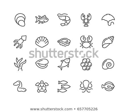 Peixe frutos do mar ícones linha mar Foto stock © Genestro