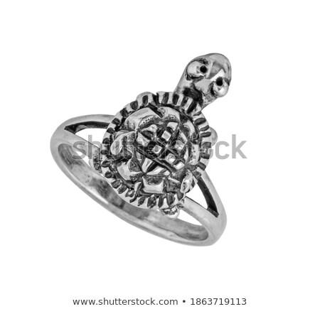 Huwelijk schildpadden illustratie familie liefde groene Stockfoto © adrenalina