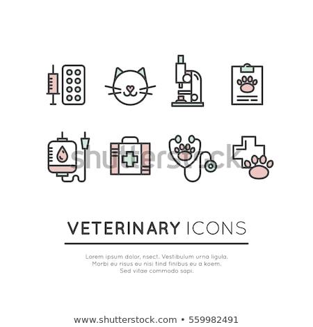 Veeartsenijkundig kliniek web icons gebruiker interface Stockfoto © ayaxmr