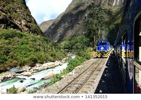 Trein licht reizen reis ochtend Stockfoto © Pakhnyushchyy