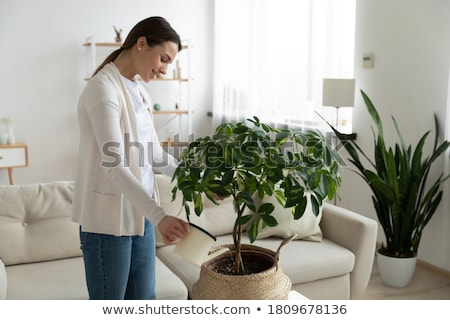 Stock photo: Young woman holding a flowerpot, indoors