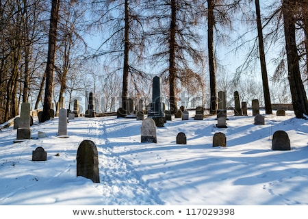 forgotten and unkempt Jewish cemetery Stock photo © artush