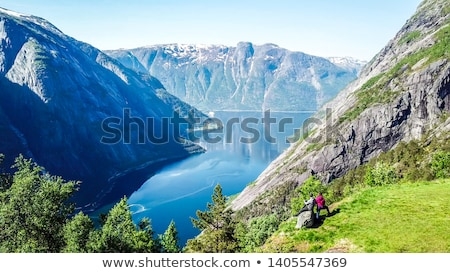 view on the eidfjord in norway Stock photo © compuinfoto