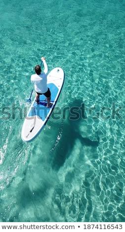 Reifer Mann stehen Reise Spaß Farbe Anlage Stock foto © IS2