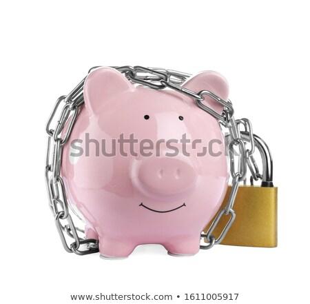 catene · salvadanaio · lock · fuori · soldi - foto d'archivio © is2