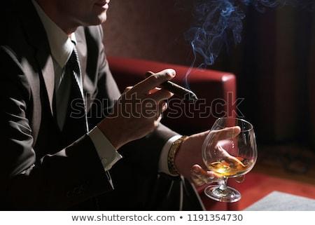 Szivar üveg whiskey jégkockák füst jég Stock fotó © Givaga