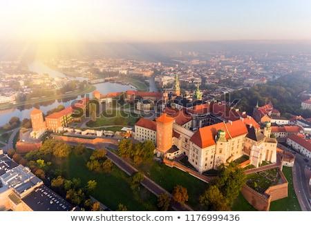 Dorado cúpula catedral cracovia Polonia rey Foto stock © rognar
