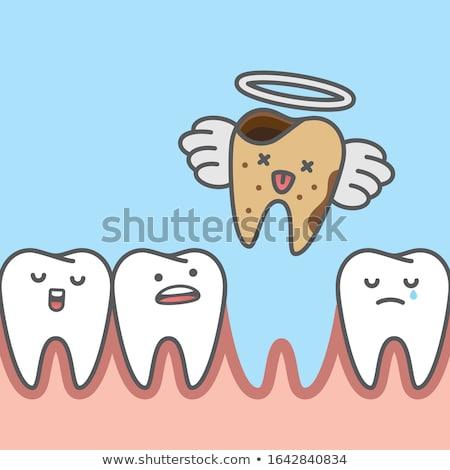 ölü diş tabut diş fırçası diş macunu diş ipi Stok fotoğraf © sifis