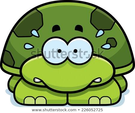 Nervioso pequeño tortuga Cartoon ilustración mirando Foto stock © cthoman