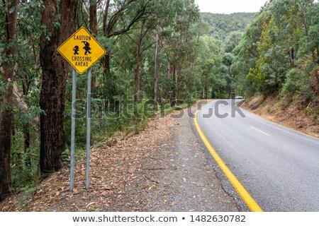 ugly gremlin sign stock photo © cthoman