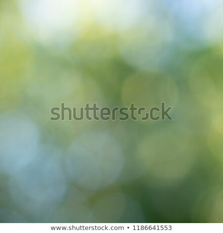 Amarillo azul bokeh círculos borroso naturales Foto stock © artjazz