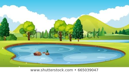 Fa zöld mező tavacska fák kék Stock fotó © robuart