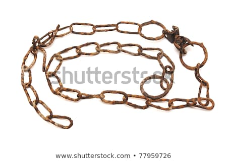 very old rusty chain isolated on a white background Stock photo © inxti