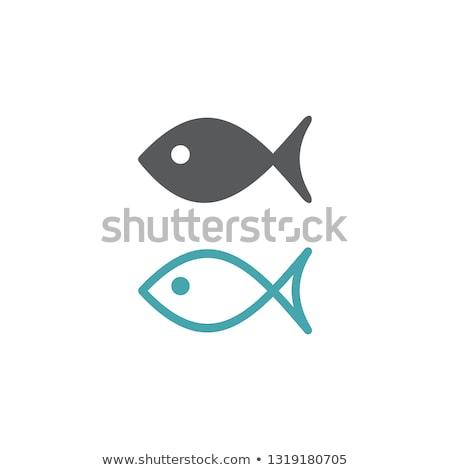Jesus peixe ícone isolado branco escolas Foto stock © kyryloff