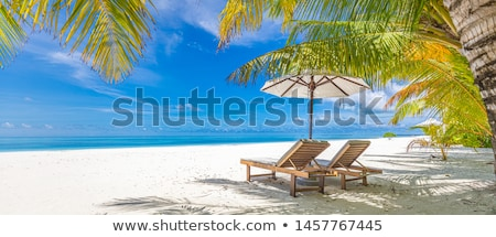 Idyllic beach white sands background abstract Stock photo © lovleah