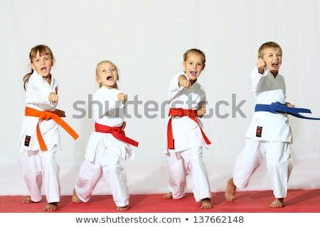 kids practicing karate stock photo © colematt