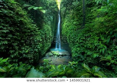 Vízesés Bali sziget Indonézia víz tavasz Stock fotó © galitskaya