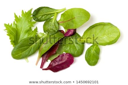 レタス · ほうれん草 · サラダ · 石 · 表 · 先頭 - ストックフォト © karandaev