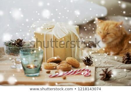 christmas gift, cookies and cat lying in bed Stock photo © dolgachov