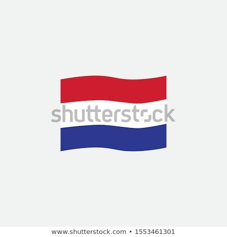 ícone projeto Holanda bandeira ilustração fundo Foto stock © colematt