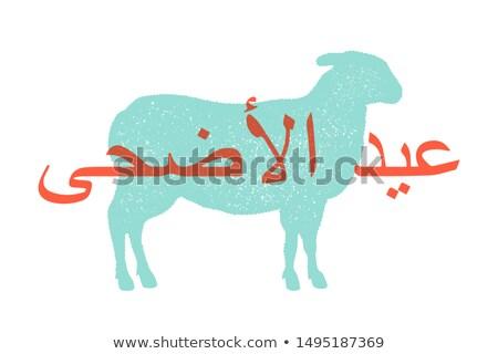 Cordero ovejas diseno animales de granja vista lateral perfil Foto stock © FoxysGraphic