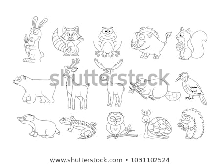 Különbségek szín könyv sündisznó betűk feketefehér Stock fotó © izakowski