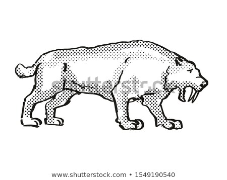 Smilidon Populator Extinct  North American Wildlife Cartoon Drawing Stock photo © patrimonio