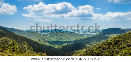 香港 谷 風景 パノラマ 緑 ストックフォト © galitskaya