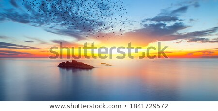 sunrise view of the rocky coast at dawn long exposure vertical stock photo © moses