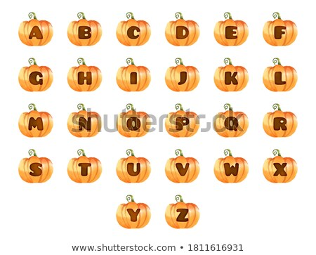 first letter of a word educational activity for kids Stock photo © izakowski