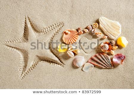 plage · sable · blanc · forme · de · coeur · imprimer · vacances · d'été · imprimé - photo stock © lunamarina