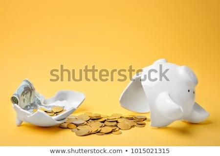 Persely érmék bankjegy pénz disznó siker Stock fotó © yupiramos