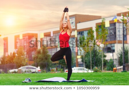 дерево · йога · женщину - Сток-фото © fahrner